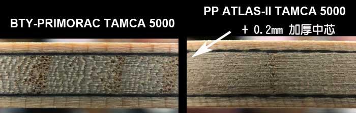 MIT PP TAMCA 5000